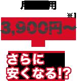月額費用3,900円~さらに安くなる!?